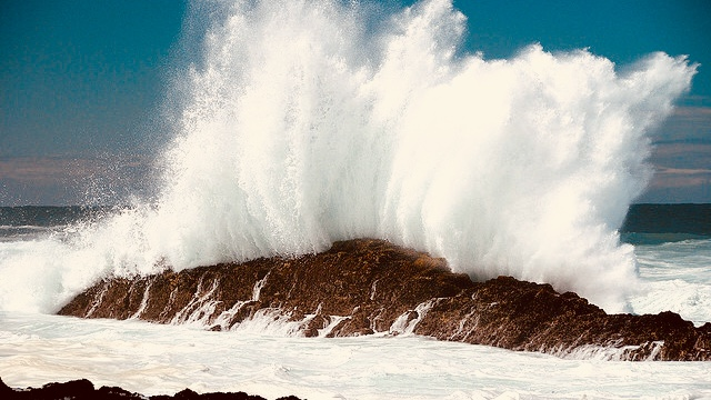 https://www.olibanumoverrunners.it/immagini_news/23-10-2018/1540291749-297-.jpg
